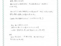 koe-2013shiroishi-m-200x150