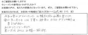 voice_snow_180037
